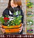 送料無料 寄せ植え ギフト 花色とプランターが選べる♪季節のおまかせカントリーガーデン〜旬のお花をたっぷり寄せ植…