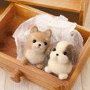 羊毛フェルト キット しば犬&シーズー 羊毛フェルト犬キット イヌ フェルト羊毛キット