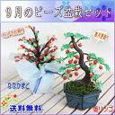 盆栽 ミニ 毎月おすすめビーズ盆栽セット 送料無料!! 山久オリジナル 手芸の山久 05P01Oct16