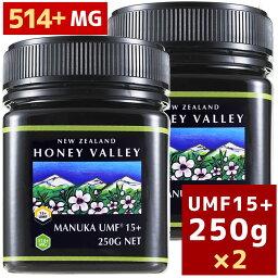 【<strong>マヌカハニー</strong>】【アクティブ<strong>マヌカハニー</strong>UMF 15+ 250g MGO514〜828相当】★2個セット天然蜂蜜/はちみつハニーバレー(100% Pure New Zealand Honey)【HLS_DU】【RCP】