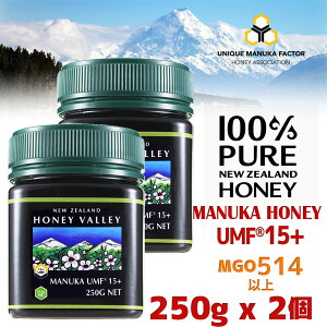 【マヌカハニー】【アクティブマヌカハニーUMF 15+ 250g MGO514〜828相当】★2個セット天然蜂蜜/はちみつハニーバレー(100% Pure New Zealand Honey)【HLS_DU】【RCP】