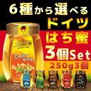 【 ハチミツ 送料無料 】 蜂蜜 バリムハニー 選べるド