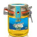 バリム アカシアハニー450g ドイツ産 アカシアはちみつ 450g アカシア蜂蜜 Balim(バリム)ハニー はちみつ ハチミツ 蜂蜜[HLS_DU][RCP]