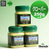クローバーハニー 250g × 3個セット ニュージーランド産クローバーはちみつとってもクリーミーな無添加・無農薬 天然生はちみつ 蜂蜜 ハチミツ【HLSDU】【RCP】
