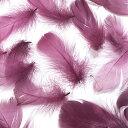 コキール(ボルドー) この羽根はディスプレイ アクセサリー ヘットドレス等に使用されてます。