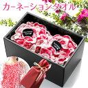 カーネーションタオル ギフト プレゼント 絢爛 セット 20...