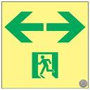 日本緑十字社 高輝度蓄光通路誘導標識 SSN953 150mm角 364953