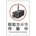【最大1000円OFFクーポン発行中】日本緑十字社 サイン標識板 サイン−110 防犯カメラ作動中 094110