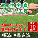 【先行予約/8月上旬頃入荷予定】人工芝 ロール/透水性リアル人工芝 2×3(10mm)/人工芝 ロール ロールタイプ リアル人工芝 人工 芝生 ガーデン ガーデニング ベランダ バルコニー テラス 庭 屋上緑化 緑 グリーン/RCP/05P03Sep16/【HLS_DU】