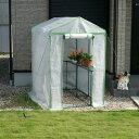 温室 ビニール/ビニール温室 大きな温室ビッググリーン ビニールハウス フラワースタンド 大型温室/RCP/05P03Sep16/【HLS_DU】
