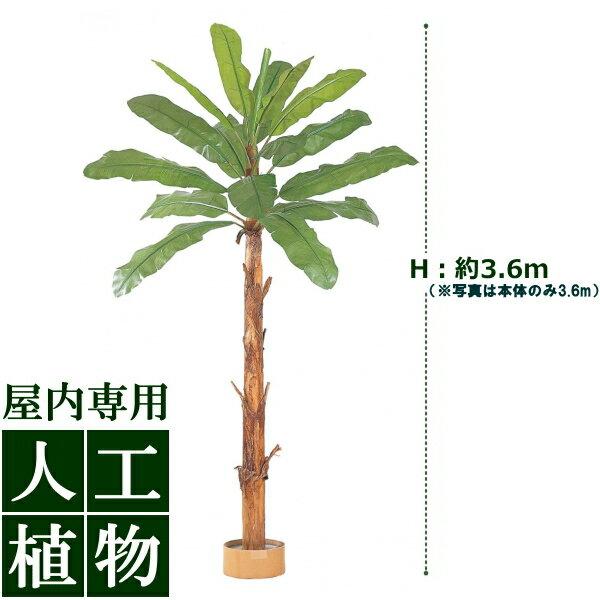 /人工植物/グリーンデコ 大型人工樹バナナ 組立式 鉢付 3.6m/送料無料/RCP/05P03Sep16/【HLS_DU】