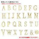 オーナメントサイン/プラスレター 51シリーズ/D-1/RCP/05P03Sep16/【HLS_DU】