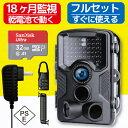 【24時間限定 ポイント2倍】【防犯カメラ トレイルカメラ ...