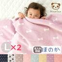 [お買得2枚組]日本製 ひなたぼっこ 綿毛布 ハーフサイズ キッズ ベビー 140×100 しっ