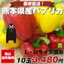 パプリカ赤5個黄色5個【M/Lサイズ混み10玉】九州/野菜/熊本/送料無料/新鮮/安全/