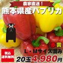 パプリカ赤10個黄色10個【M/Lサイズ混み20玉】九州/野菜/熊本/送料無料/新鮮/安全/