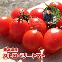 ストロベリートマト1kg 九州/野菜/熊本/新鮮/安全/
