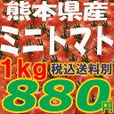 ミニトマト【ピュアチェリー/...