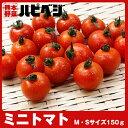 ミニトマト【M/Sサイズ150g】同梱専用 ※こちらの商品は野菜セット購入した方のみの同梱商品になります。