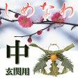 【迎春 準備】玄関 用 しめ縄 中 しめ飾り お正月 リース 注連縄 飾り方 【RCP】