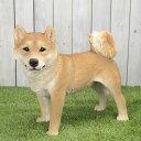 【送料無料】アニマルオブジェ:柴犬(親) 犬 置物 インテリア 動物 オブジェ 子犬