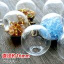 楽天最安値にチャレンジ 【10個】ガラスドーム(直径約16mm)