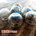 ショッピング最安値 楽天最安値にチャレンジ!!【10個】ガラスドーム(直径約14mm)