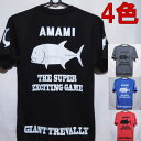 GT TシャツAMAMI GIANT TREVALLYジャイアントトレバリー速乾素材のドライTシャツ