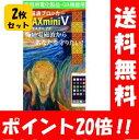【送料無料】電磁波ブロッカー MAX mini V×2枚セット!【ポイント20倍】 電子レンジや冷蔵