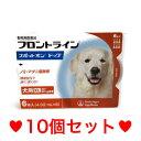 ◎ON【宅急便・送料無料】犬用 フロントラインスポットオン XL(40〜60kg未満)6本 [10個セット]