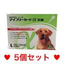 ●【メール便・送料無料】 犬用 マイフリーガードα L(20〜40kg未満)3本 [5個セット]※DSファーマーさんのものと同じです