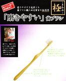 """""""磨きやすい"""" 歯ブラシ 極 LT−09(12本セット) 【あす楽】【HLSDU】【RCP】"""