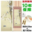 掛け軸 モダン おしゃれ 桜に小禽図 酒井抱一 洛彩緞子本表装 幅54.5×高さ約190cm 新絹本