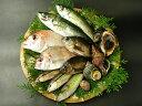 瀬戸内海の天然魚介類詰め合わせ(1〜3人分)