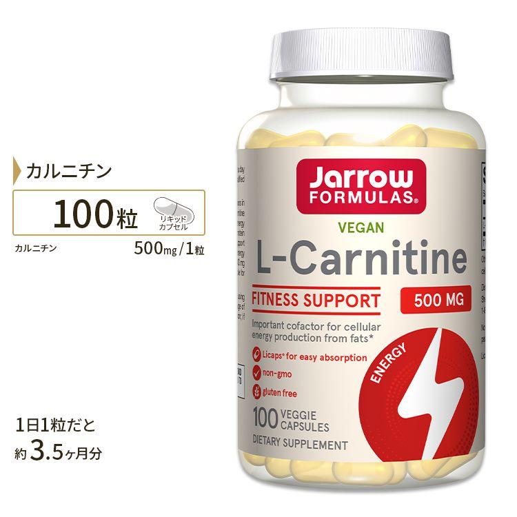 カルニチンサプリメントL-カルニチン500mg100粒(リキッドカプセル)/サプリメント/サプリ/ダ