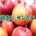 【送料無料】訳ありりんご サンふじ3kg【青森県産・