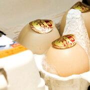 烏骨鶏卵 10個 規格外品【北海道・九州は送料が1296円になります。】 卵 プレゼント 贈り物 ギフト 大垣 岐阜県 値段 うこっけい ウコッケイ 玉子 引き出物 お中元 お歳暮 ご挨拶