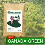 ★!!【NEWカナダグリーン1袋90平方メートル分】10日でゴルフ場の芝生が生える!!芝生の素(芝生の種)1年中ふかふかの緑色の芝生♪ニューカナダ・グリーン【RCP】
