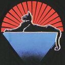 ショッピングトップス 【PRINT TEE】グレイトフルデッド ブラック キャッツ Tシャツ/オフィシャル/ロック バンドT フェス アウトドア【トップス 半袖 ブラックT バックプリンとあり】BLACK CATS T-SHIRTS【GATEFUL DEAD】【TOPS】【NF120AC】