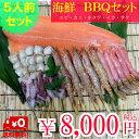 海鮮BBQセット 5人前 エビ・カニ・ホタテ・イカ・サケ 5種セット 串付き バーベキューセット...