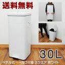 【送料無料】ゴミ箱 30L スクエア ペダル式 ゴミ箱 フタ付きゴミ箱 ふた付きダストボックス ごみ箱 ゴミ箱 キッチンゴミ箱