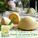 ほんきのレモンケーキ-3個入