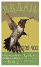 コーヒー豆 300g ブラジル サントス NO2 コーヒー 【RCP】
