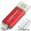 LEIZHAN TYPE-C USB メモリー・フラッシュドライブ 256G ブラック 人気USB 高速転送 OTG 3.0携帯電話 コンピューター用 容量不足解消 マイクロペンドライブ 大容量 Uスティック (256GB、 レッド)