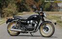 【rs gear】【アールズギア】【マフラー】ワイバンクラシック Wybern Classic W800【WK20-02CT】※納期3週間程度【送料無料】