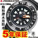 シチズン エコドライブ プロマスター マリン BN0176-08E ダイバーズウオッチ メンズ 300m 防水 エコドライブ プロフェッショナルダイバー