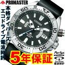 シチズン プロマスター メンズ エコドライブ ソーラー電波 ダイバーズウォッチ PROMASTER PMD56-3083 PMD563083 腕時計