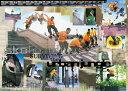 『スケーティングボード』ポスター PP-0115 インテリア おしゃれ レトロ フレーム デザイン 壁掛け 模様替え