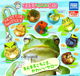 タカラトミーア - star cute animal manmaru frog netsuke total 8 pieces