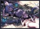 混沌の女神様 カードスリーブ ☆『ALOシノン/illust:マシマサキ』★ 【コミックマーケット94/C94】
